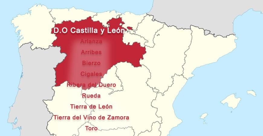 Denominaciones de Origen Vinos Castilla y León-2020